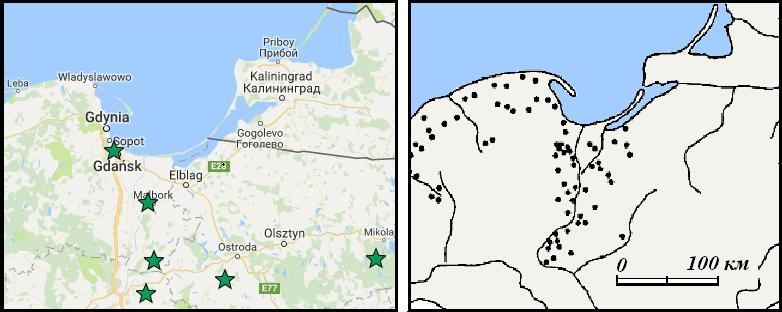 Ancient Teutonic, Gothic, and Frankish Place Names in Eastern Europe